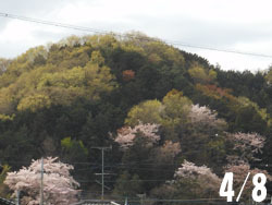 160504_oyama.jpg