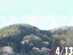170508_oyama1.jpg