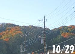 181228_yama.jpg