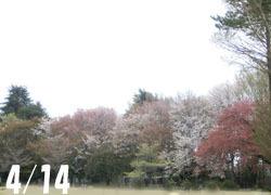 190616_park1.jpg