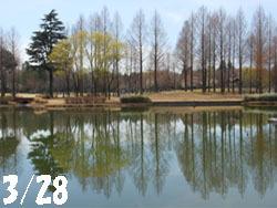 150411_park.jpg