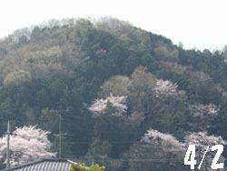 150428_yama.jpg
