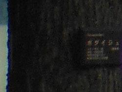 150807_bodaiju2.jpg