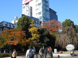 161223_ueno01.jpg