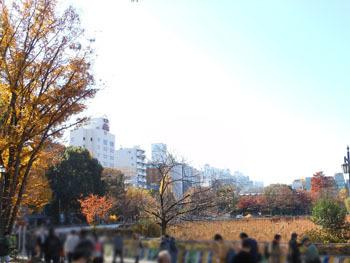 161223_ueno02.jpg