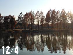 170112_park.jpg