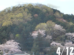 170503_yama.jpg