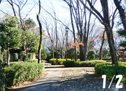 180108_park.jpg
