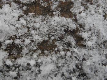 180216_snow09.jpg