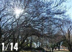 180224_park.jpg