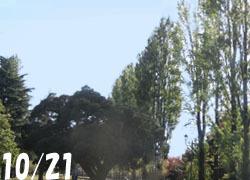 181115_park1.jpg