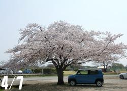 190609_kasen_jiki01.jpg