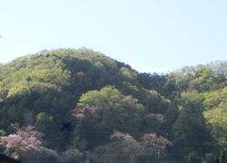 190621_oyama.jpg