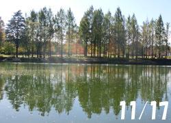 200228_park.jpg