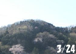 200512_yama.jpg