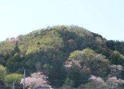 200525_yama.jpg