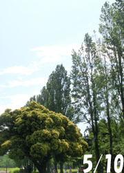 200708_sudajii1.jpg