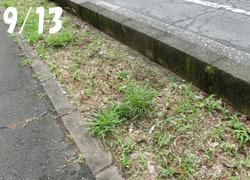 201123_turubo1.jpg