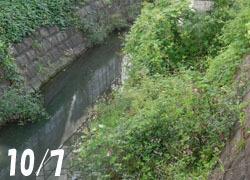 201220_kawa1.jpg