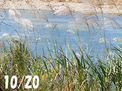 210114_susuki.jpg