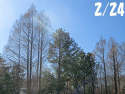 210411_park1.jpg